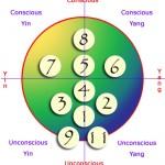 lifecross-layout-hemispheres